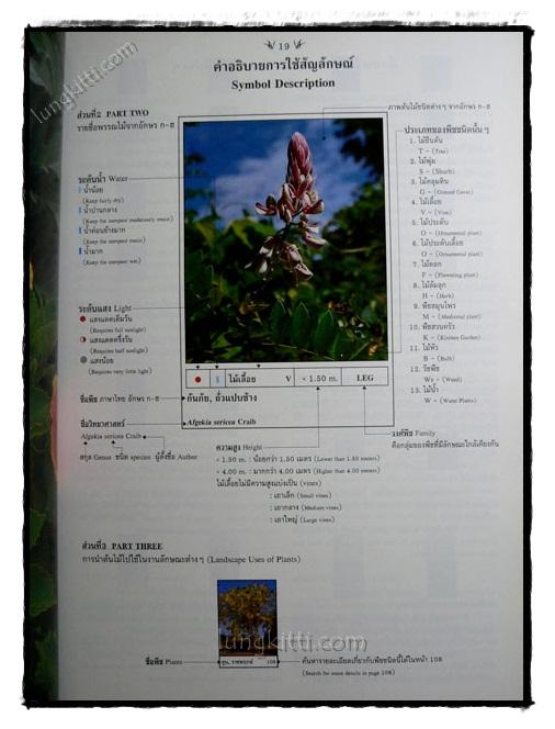 พฤกษาพัน (PLANT MATERIALS IN THAILAND) 4