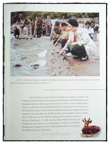THAILAND Executive Diary 2004 7