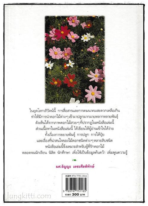ไม้ดอกแสนสวย : ไม้ดอกไม้ประดับ 1