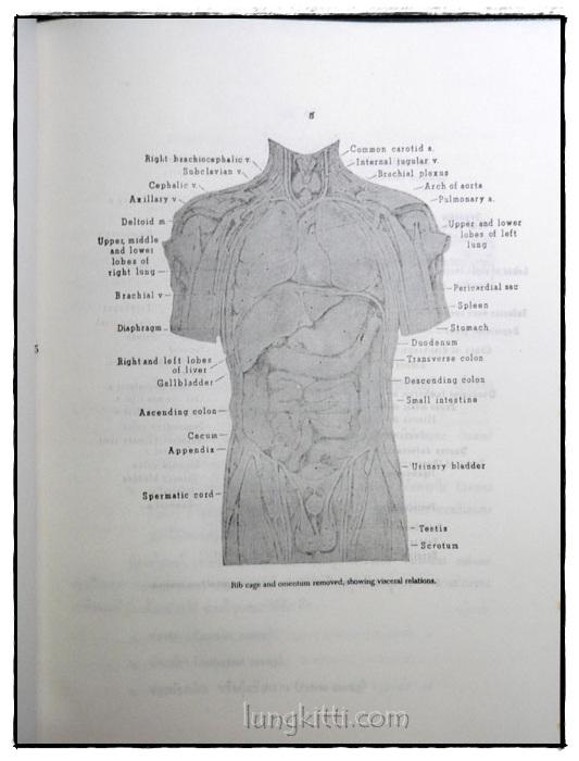 กายวิภาคศาสตร์และสรีรวิทยา 5
