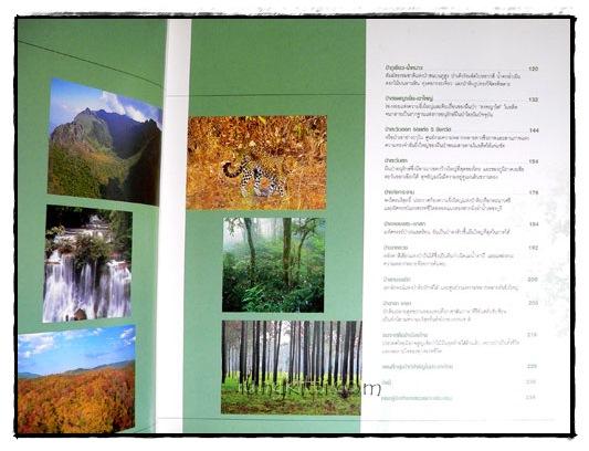 ป่ามรดกไทย อาณาจักรพรรพืชและสรรพชีวิตแห่งป่าเขตร้อน 2