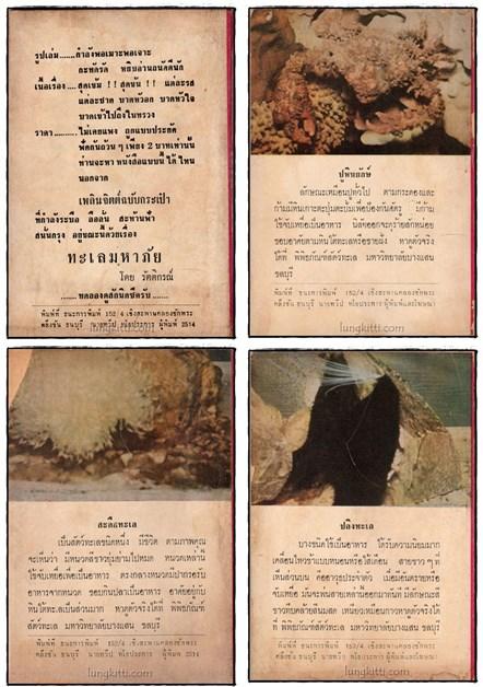 ป่ามหาภัย  ตอน ทะเลมหาภัย  (16 เล่มจบ)/ รัตติกรณ์ 1
