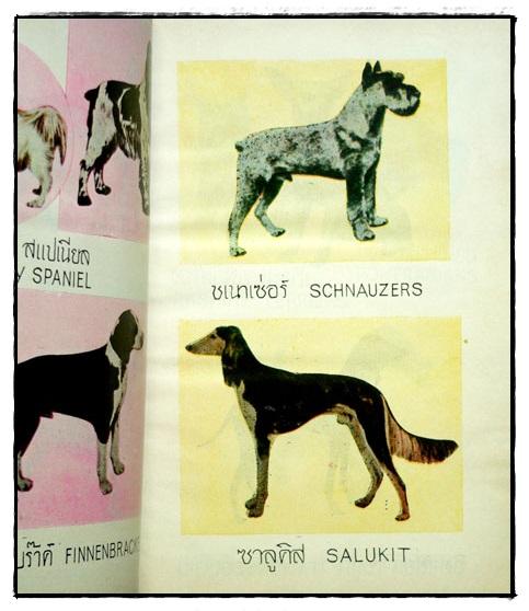 ตำราเลี้ยงสุนัข และ วิธีรักษาโรค / หลวงสำราญเกษตรพันธุ์ 6