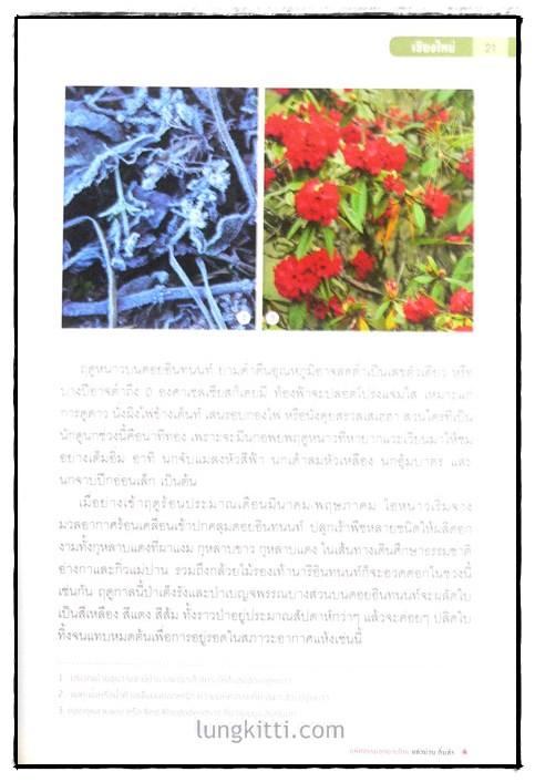 มหัศจรรย์อุทยานไทย แอ่วม่วน กิ๋นลำ 4