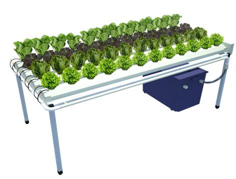 ชุดรางสำเร็จรูปสำหรับปลูกผักไฮโดรโปนิกส์ ผักไร้ดิน ขนาด 48 หลุม รุ่น Easy Farm 001