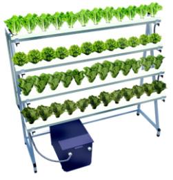 ชุดรางสำเร็จรูปสำหรับปลูกผักไฮโดรโปนิกส์ ผักไร้ดิน ขนาด 48 หลุม รุ่น Townhouse Farm 003