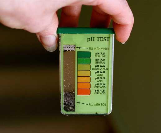 แคปซูลวัด pH ดิน ยี่ห้อ Rapitest โทร. 089-450-7795 1