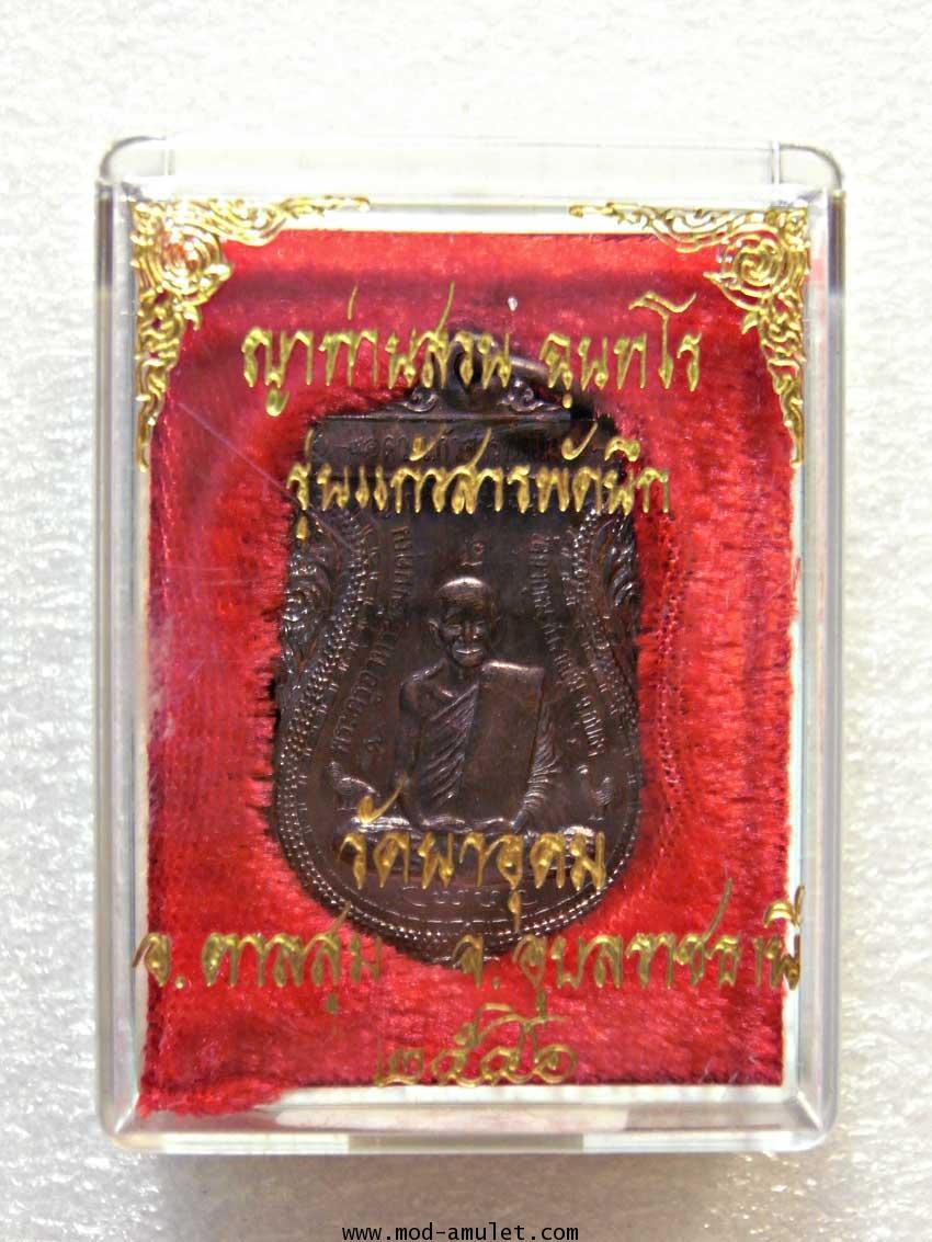 เหรียญญาท่านสวน รุ่นแก้วสารพัดนึก ปี46 (5) 2