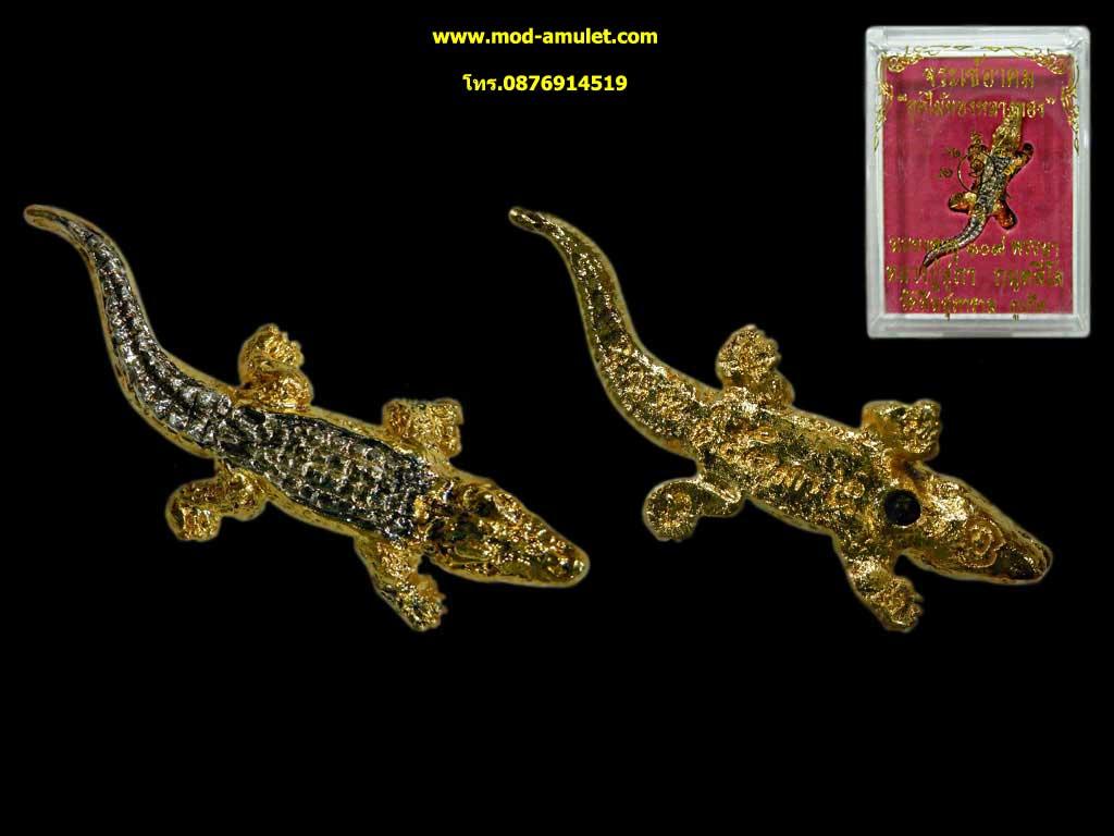 จระเข้อาคมอุดไม้ทองหลางทอง รุ่นแรก หลวงปู่สุภา กันตสีโล (3)