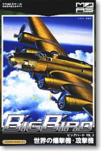 BigBird Vol.3 1/144