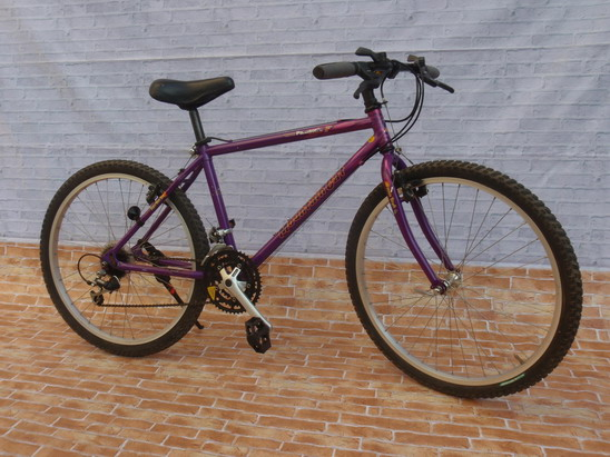จักรยานเสือภูเขา Panasonic Mountain Cat