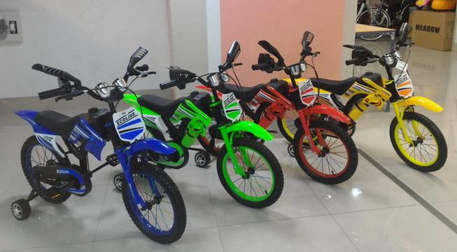 จักรยานเด็ก ทรงมอเตอร์ไซค์ ECOLINE รุ่น Eco 48