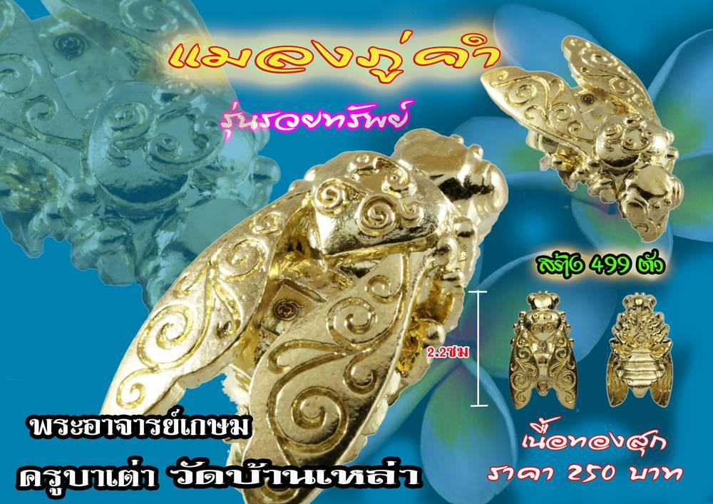 แมลงภู่คำ เนื้อทองสุก รุ่นรวยทรัพย์ ครูบาเต่า วัดอุโบสถบ้านเหล่า เชียงใหม่ 2562