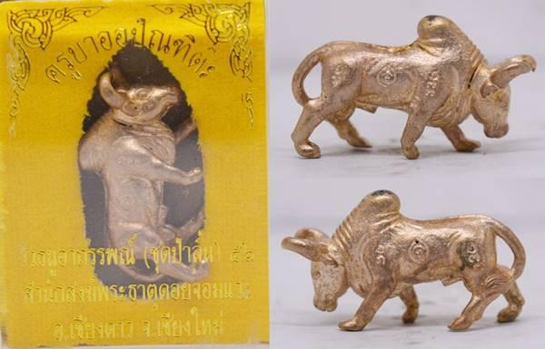 วัวธนู เนื้อนวะ  ครูบาออ วัดพระธาตุดอยจอมแวะ 2556 ขนาด 3.1*1.8 ซม