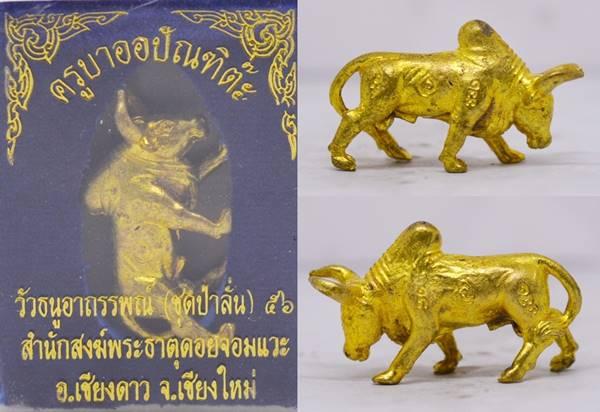 วัวธนู เนื้อทองทิพย์ ครูบาออ วัดพระธาตุดอยจอมแวะ 2556 ขนาด 3.1*1.8 ซม