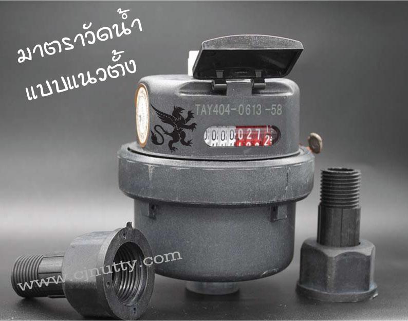 CJ-WM-TAYO-PVC-LXHY มาตรวัดน้ำชนิดลูกสูบ แนวตั้ง 1/2
