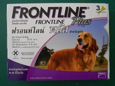 FRONTLINT PLUS  (L)