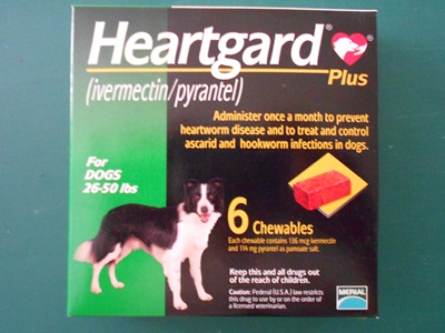 HEARTGARD PLUS  (M)