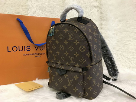 The Louis Vuitton Palm Springs Backpack PM Mirror 1:1