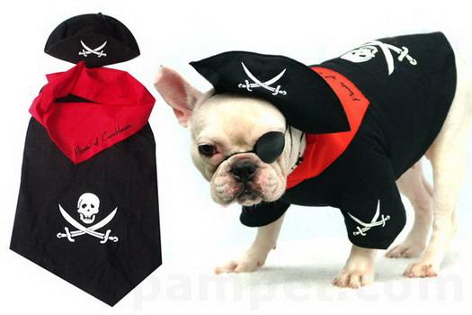 ชุดแฟนซี Pirate