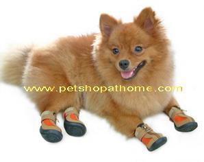 รองเท้าสุนัข