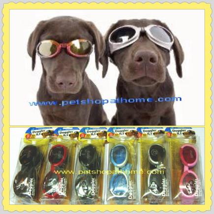 Doggles แว่นตากันแดด