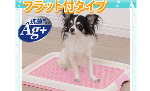 ห้องน้ำสุนัข รุ่นป้องกันการตะกรุยแผ่นรองซับ