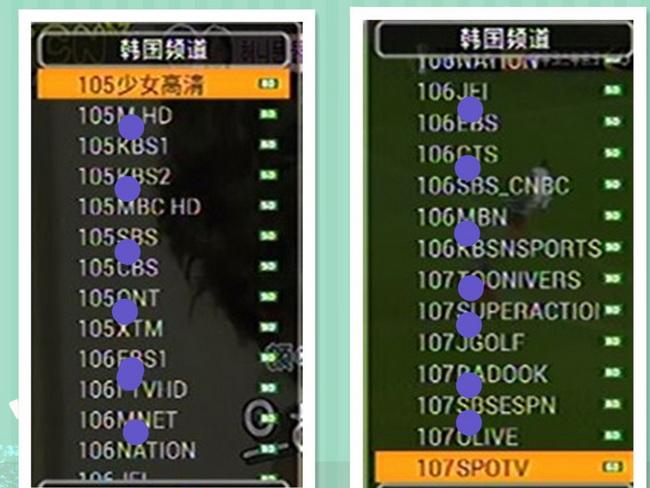 IPTV ดูทีวีต่างประเทศเยอะแยะมากมาย 300กว่าช่อง(DIMOND PACKAGE) 4