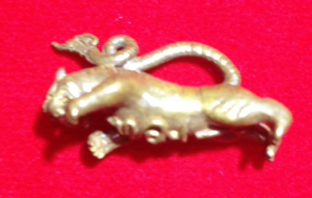 เสือตลาดแตก (เพชรเต็มปาก) หลวงปู่เสาร์ ๕ วัดค่ายลูกเสือ นนทบุรี