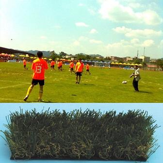 หญ้าเทียมขนยาว  สีเขียว