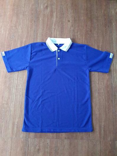 POLO 0001เสื้อโปโล เสื้อโปโลราคาถูก รับทำตามออเดอร์ลูกค้า พร้อมปักโลโก้ เนื้อผ้าตามที่ต้องการ