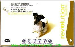 Revolution สุนัขหนัก 5 - 10 กก. (น้ำตาล) ยาหยดกำจัดเห็บหมัด ไร ป้องกันพยาธิหนอนหัวใจ (3 หลอด)