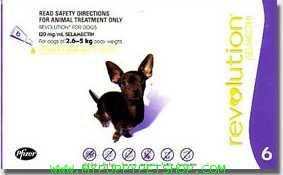 Revolution สุนัขหนัก 2.6 - 5 กก. (ม่วง) กำจัดเห็บหมัด ไร ป้องกันพยาธิหนอนหัวใจ (3 หลอด) EXP: 06/2022