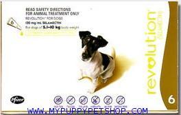 Revolution สุนัขหนัก 5-10 กก. (น้ำตาล) ยาหยดกำจัดเห็บหมัด ไร ป้องกันพยาธิหนอนหัวใจ (3 หลอด) EXP:5/21