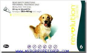 Revolution สุนัขหนัก 21-40 กก. (เขียว) ยาหยดกำจัดเห็บหมัด ไร ป้องกันพยาธิหนอนหัวใจ (3 หลอด) EXP:2022