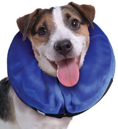 หมด  E-Collar for Cat-Dog (Small) ปลอกคอกันเลีย ใหม่หุ้มด้วยผ้ากำมะหยี่ นุ่มเบาสบาย  รอบคอ 6-10 นิ้ว