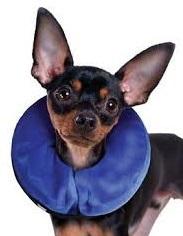 Kong E-Collar for Cats+Dog (X-Small) ปลอกคอกันเลีย นุ่มเบาสบาย  (รอบคอ 6-8  นิ้ว)