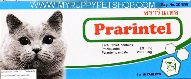 Prarintel Cat พรารินเทล ยาถ่ายพยาธิตัวกลมและพยาธิตัวตืด สำหรับแมวโดยเฉพาะ 120 เม็ด (ขายส่ง 12 กล่อง)