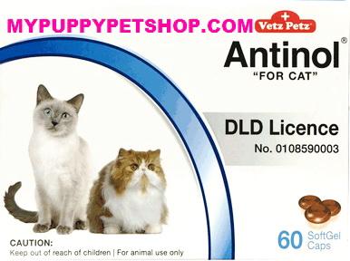 Vetz Petz Antinol CAT วิตามินบำรุงข้อต่อแมว ข้อกระดูก ลดปวดข้ออักเสบ (กล่อง 60 เม็ด) EXP:10/2022