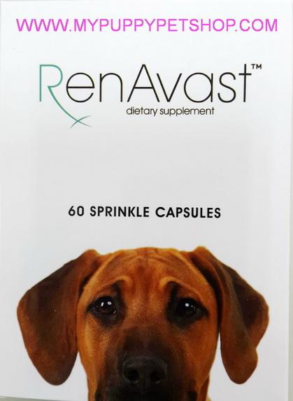 RenAvast DOG วิตามินบำรุงสุนัข ป่วยโรคไต ไตเสื่อม ค่าไตขึ้น บำรุงระดับเซลล์  (60 แคปซูล)