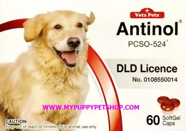 Vetz Petz Antinol DOG แก้ปวดข้อสุนัข ช่วยบรรเทาอาการข้ออักเสบ ลดความเจ็บปวดข้อ (กล่อง 60 เม็ด)