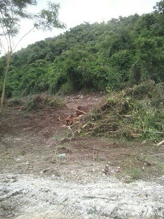 จ.สระบุรี อ.แก่งคอย ต.หินซ้อน / นส3ก.5-2-41ไร่ ใกล้เขื่อนป่าสักฯ