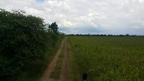 จ.ลพบุรี เขื่อนป่าสักฯ 3
