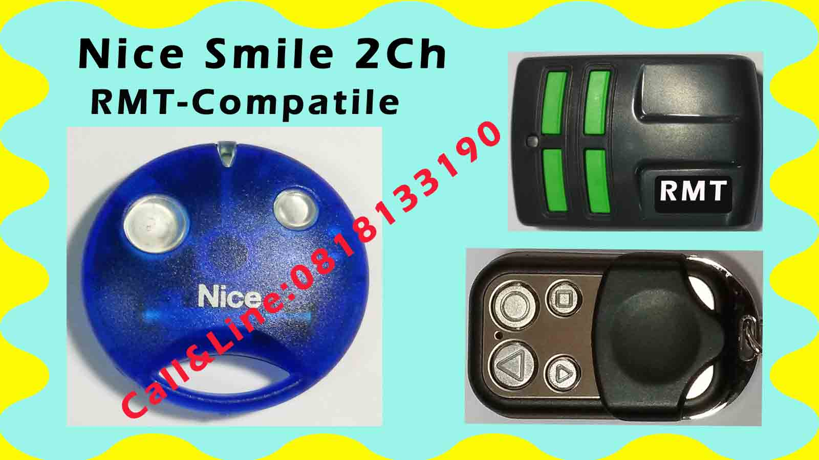 Nice Smile  Auto-Gate 2Channel