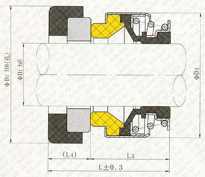 Seals Dimension CM 301