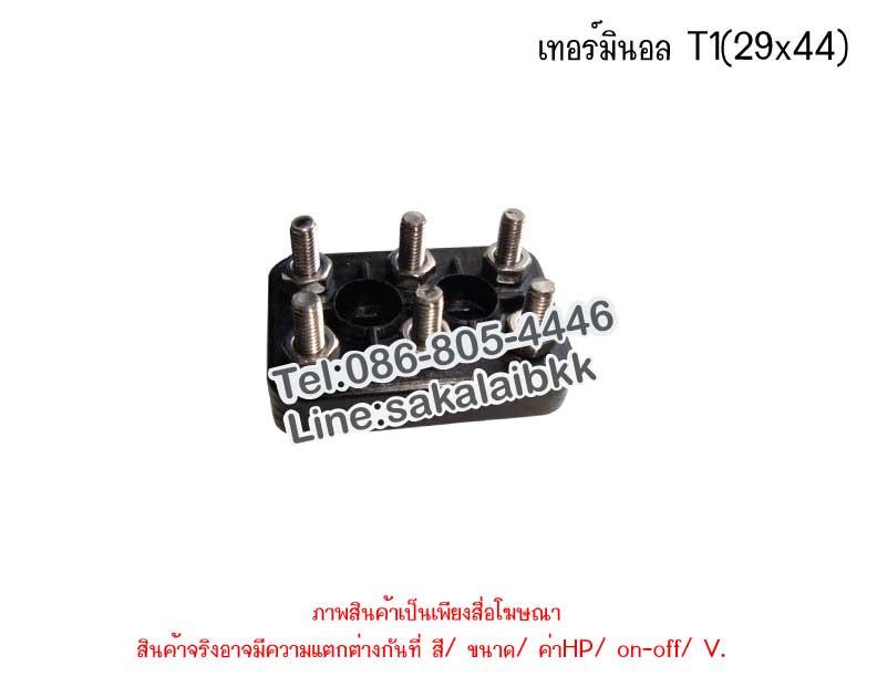 เทอร์มินอล T1(29x44)