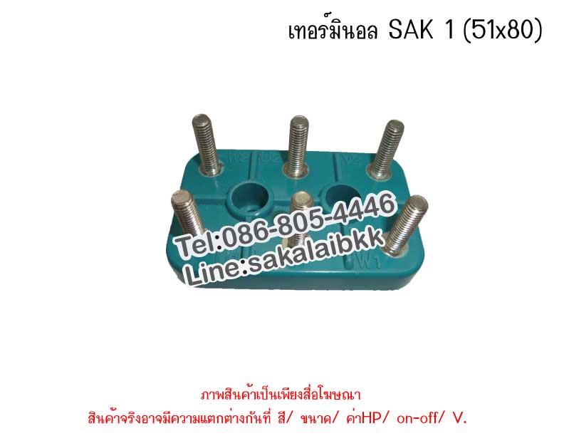 เทอร์มินอล SAK 1 (51x80)