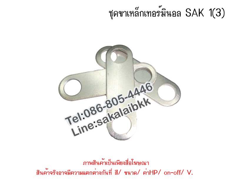 ชุดขาเหล็กเทอร์มินอล SAK 1(3)