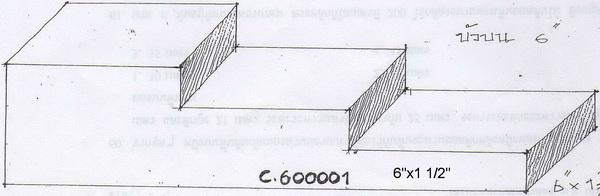 C600001