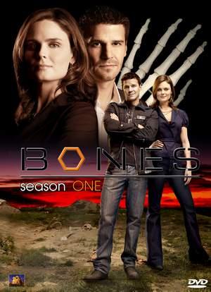 Bones Season 1/โบนส์ พลิกซากปมมรณะ ปี 1 (Sub Thai 11 แผ่นจบ)